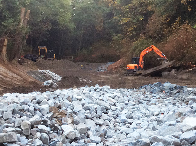 a97c7a9d1a57 This project got its start back in 2015 when the City of Surrey Engineering  and Parks departments purchased this unique property with several drainage  ponds ...